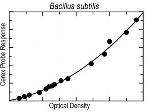 B subtilus graph