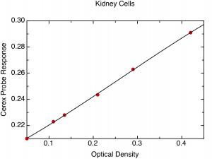 Kidney Cellsn